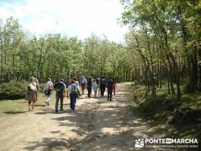 ruta Cascadas del Purgatorio; ruta de los pescadores arenas de san pedro; rutas por madrid y alreded